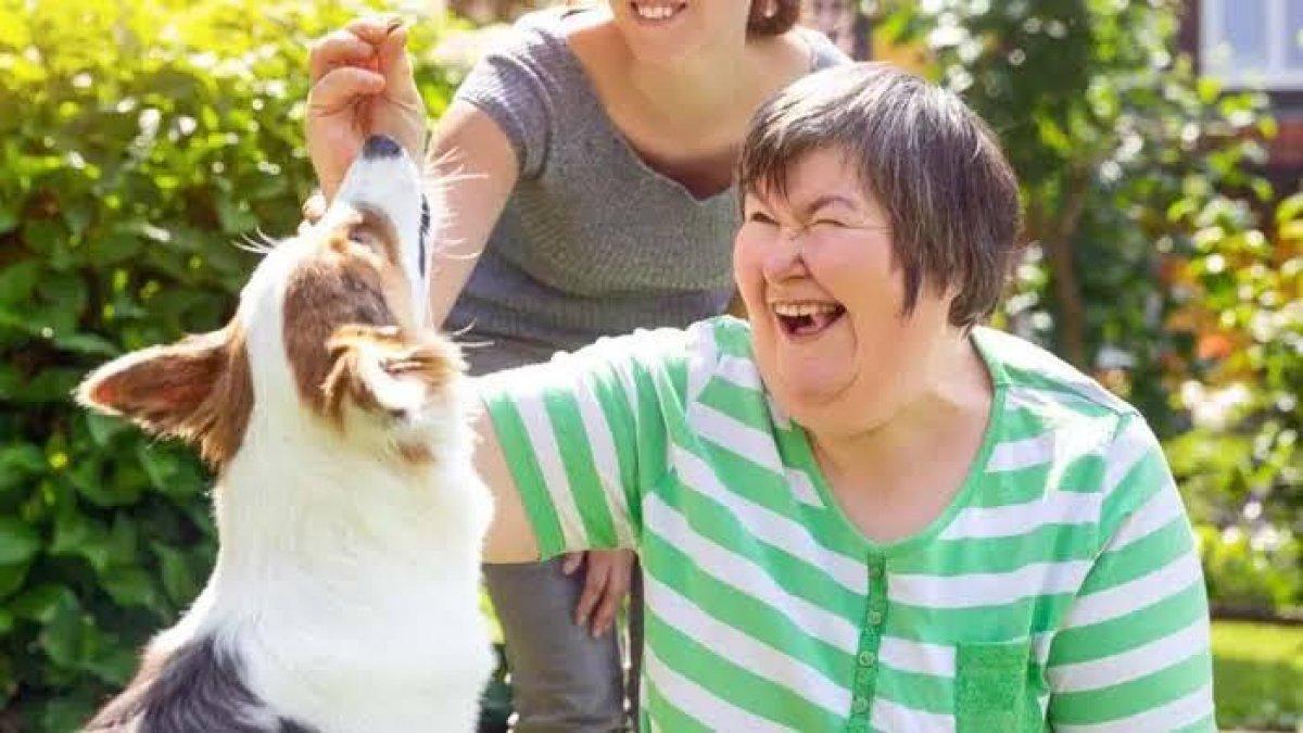 [Pet Terapia e a importância dos animais na vida de pessoas com deficiência]