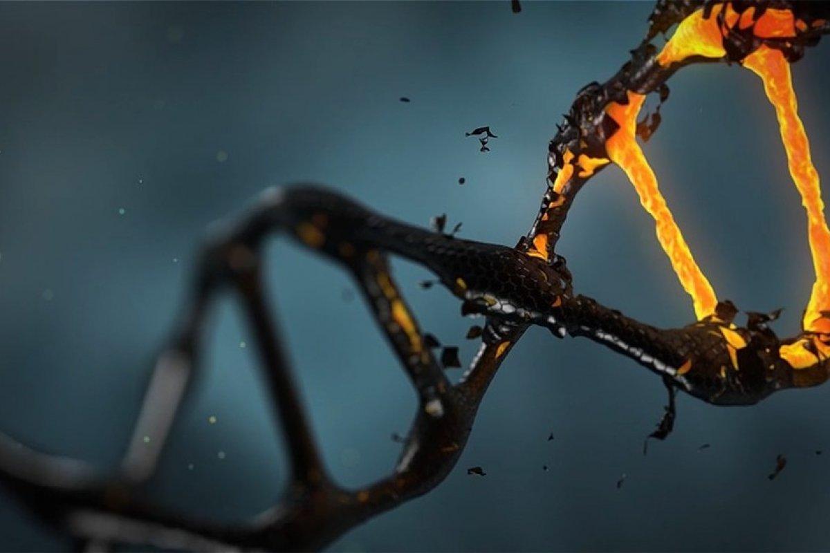 [Brasileira desenvolve projeto para identificar as principais características genéticas para prever doenças]