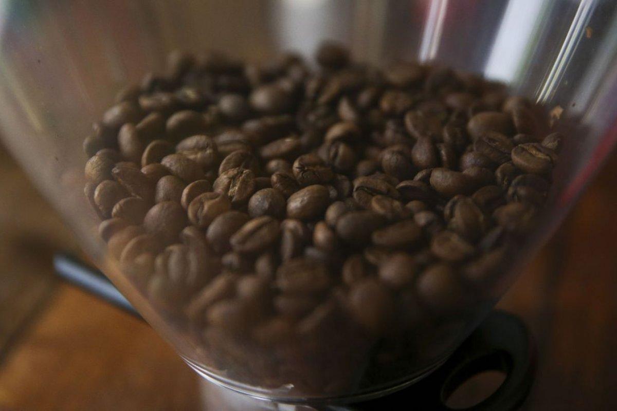 [Cecafé: exportação de café robusta apresenta crescimento de 4,7% em maio]
