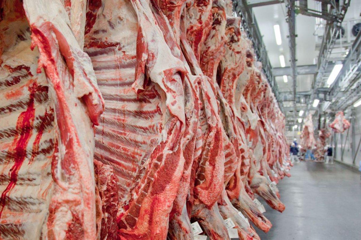 [Quatro frigoríficos do Brasil são impedidos de exportar carne para a China]