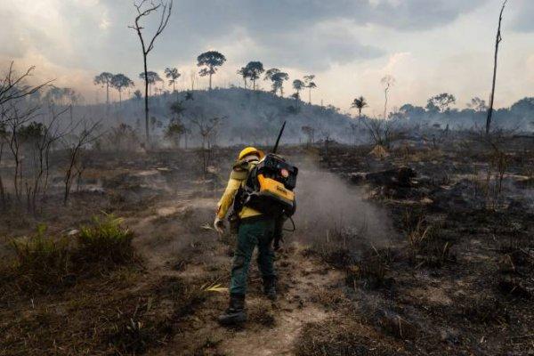 [Brigadistas da Chapada Diamantina, na Bahia, arrecadam doações para enviar voluntários para combater fogos no Pantanal]
