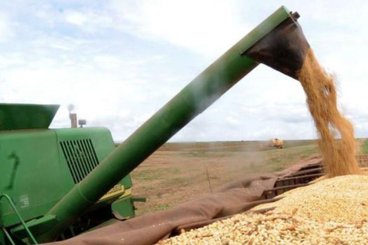 [Bolsonaro aumenta número de profissionais na diplomacia para Agricultura]