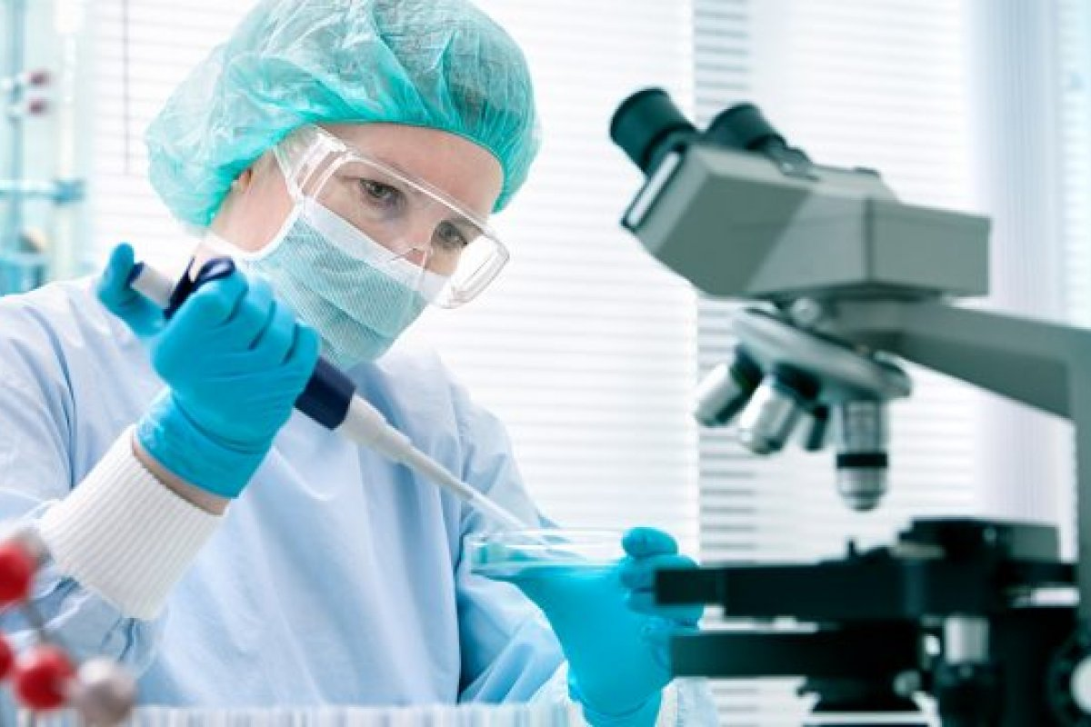[Medicamento para combater o Alzheimer pode chegar ao Brasil em dois anos ]