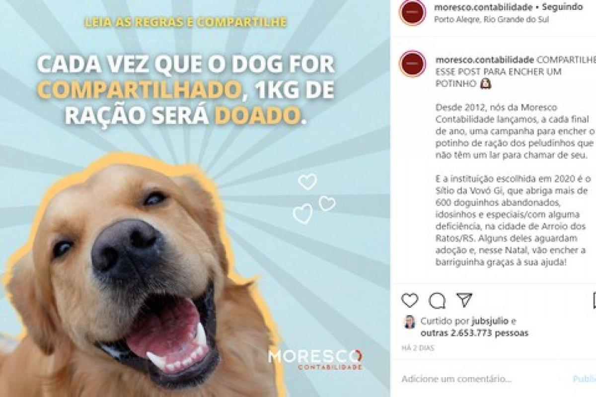[Campanha de marketing para ajudar cães viraliza nas redes sociais neste fim de semana]