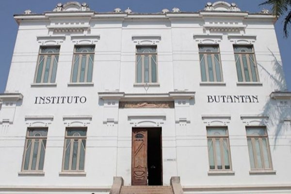 [Instituto Butantan entrega documentos para uso emergencial da Coronavac à Anvisa]