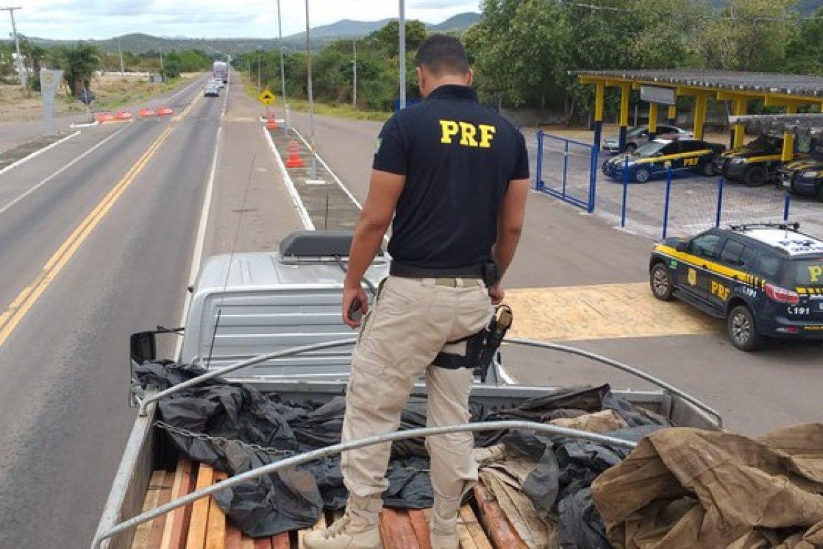 [Caminhão é apreendido com carga de madeira florestal na BR-407]