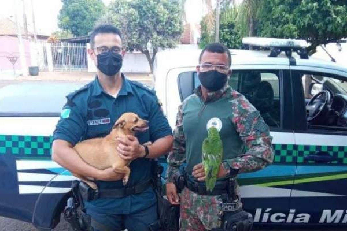 [Mãe de adolescente suspeito de transmitir tortura de animais pela internet pagará multa de R$ 9 mil]