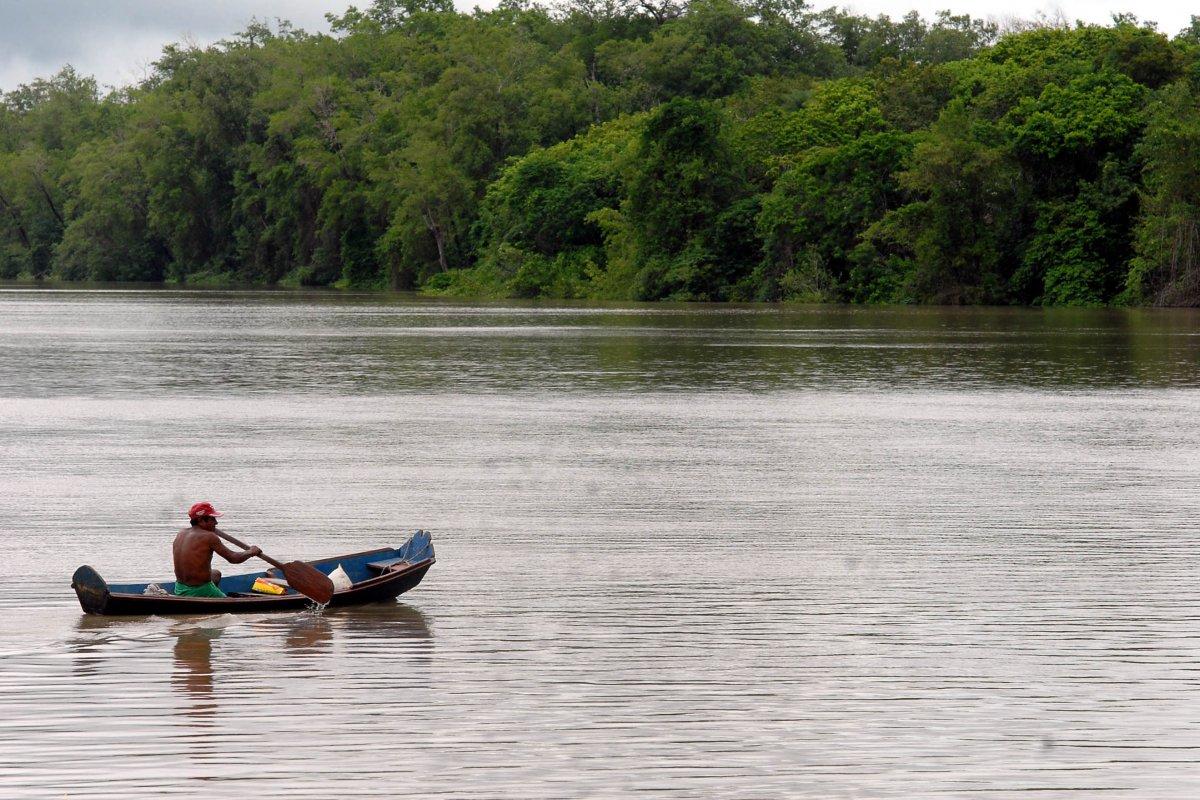 [Fundo Amazônia está com quase R$ 3 bilhões parados no cofre]