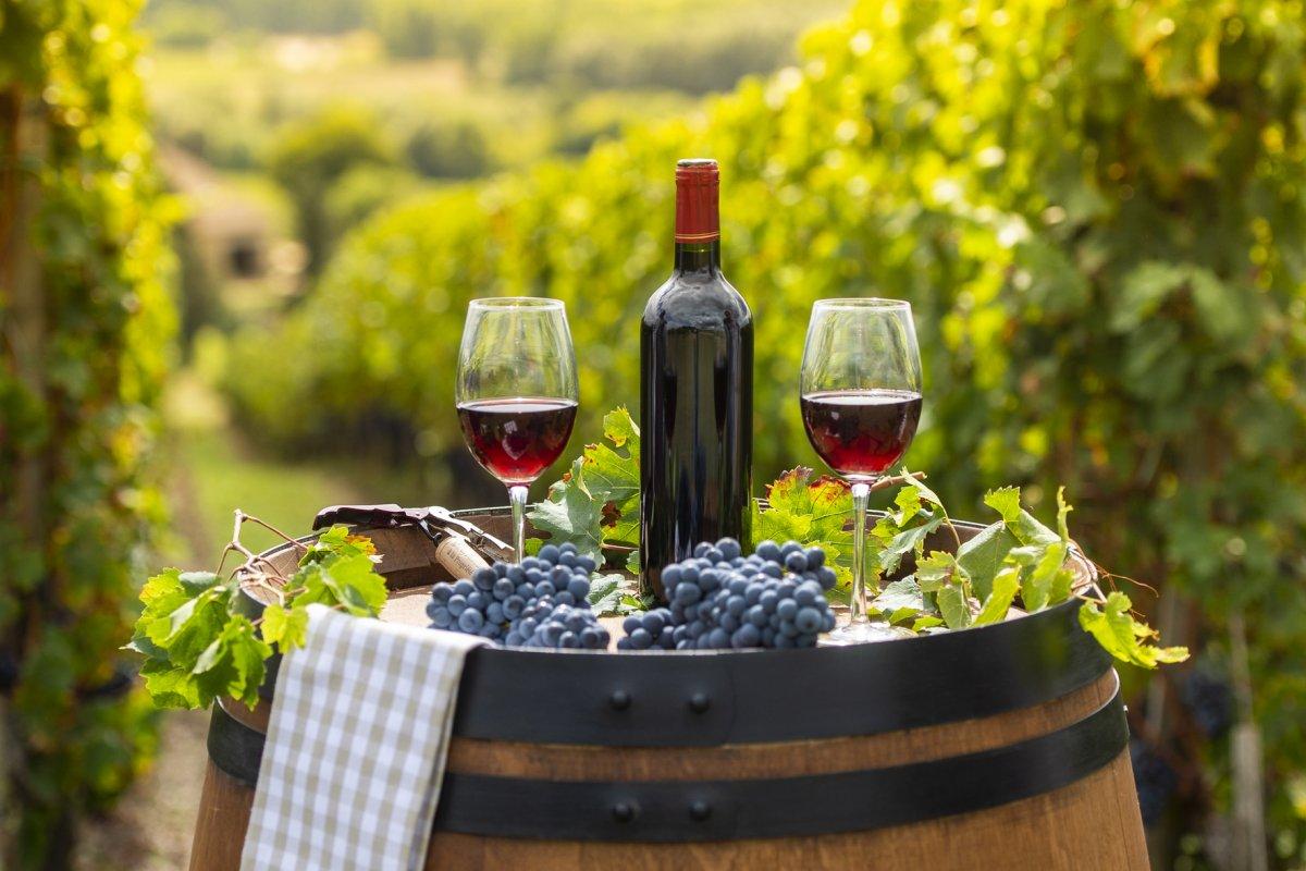 [Borgonhas e Bordeaux, dupla imbatível para brindar no dia dos Pais]