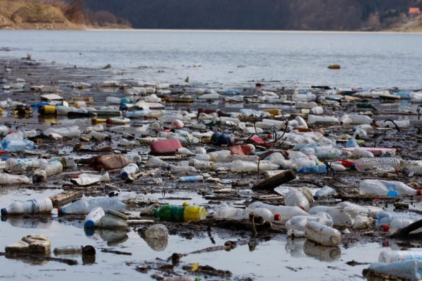 [Estudo aponta necessidade de leis para deter poluição por plásticos]