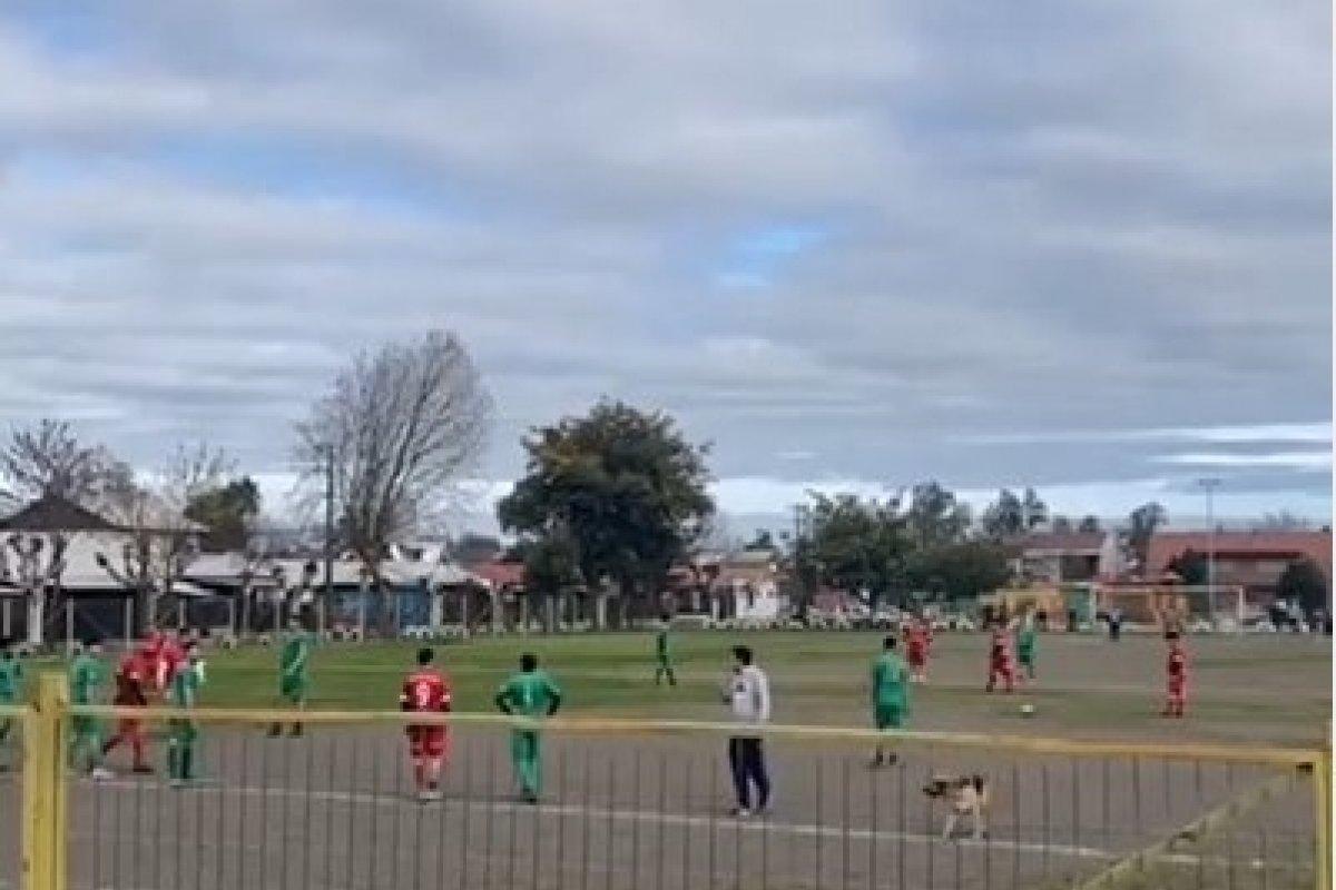 [Cachorro rouba a cena após invadir partida de futebol e fazer gol, no Chile]