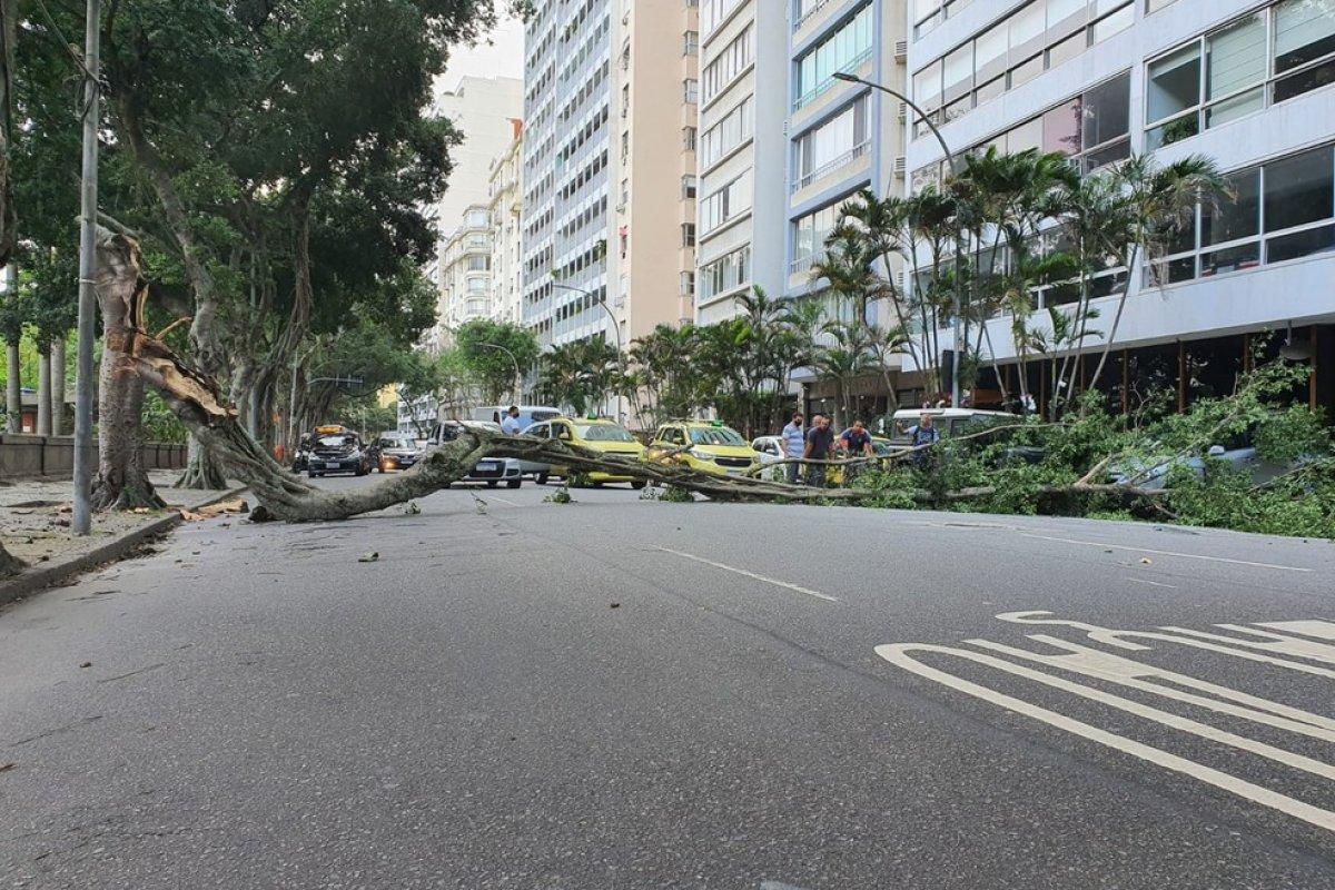 [Vídeo: ventos causam estragos no Rio de Janeiro ]