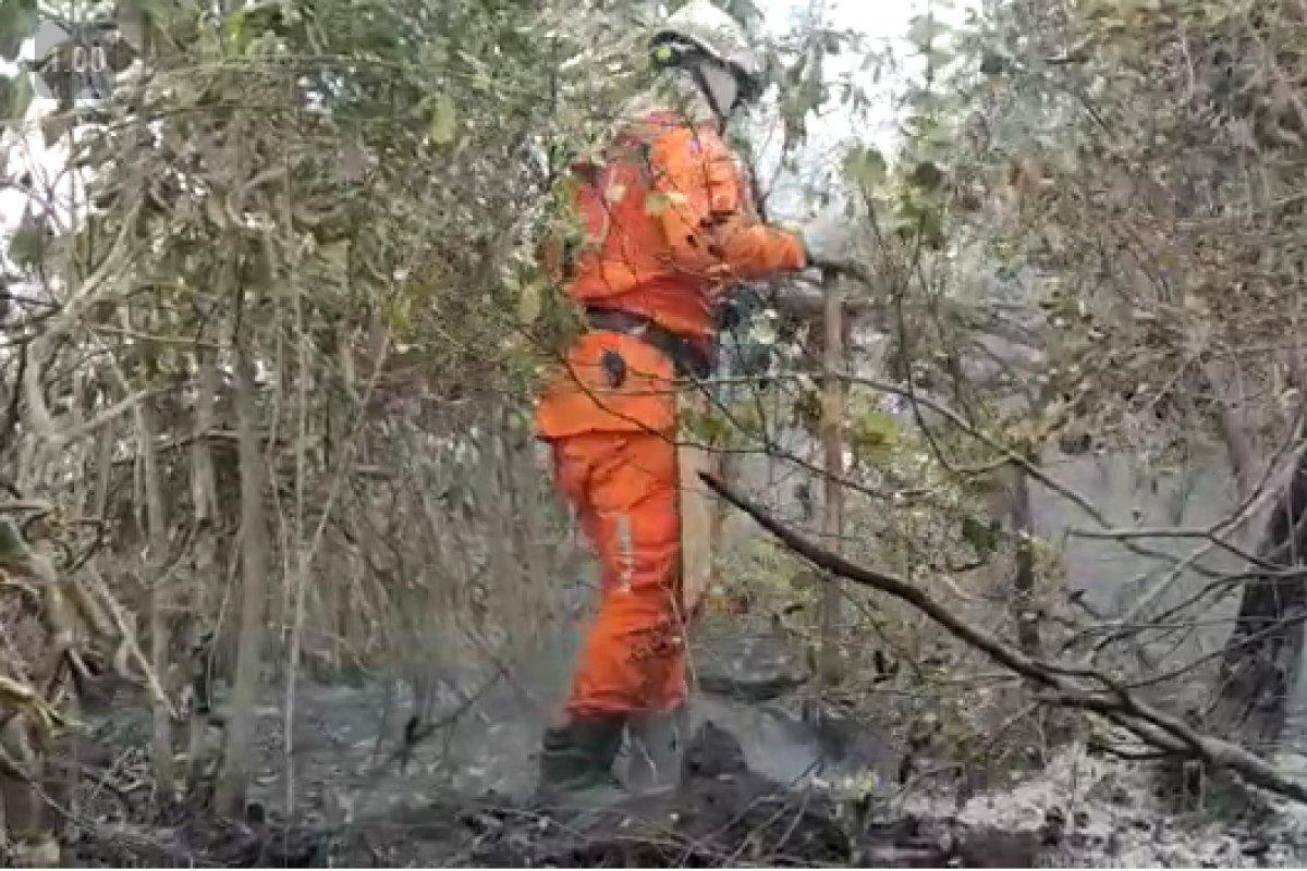 [Vídeo: Operação Florestal Bahia 2021 combate incêndios em 16 municípios baianos ]